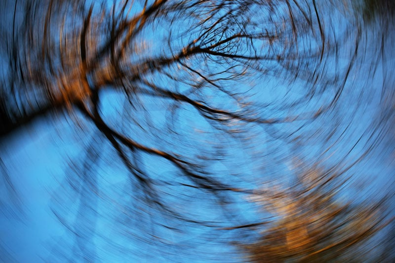 Blurry spinning image looking up at trees