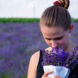 Woman smelling a bunch of lavender while standing in a field of lavender